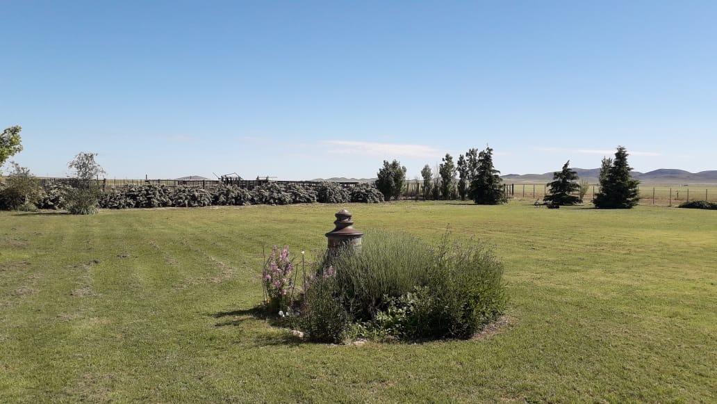 Campo en Saavedra con vista a las sierras